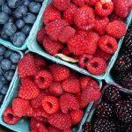 Berries & Cardiovascular Disease Risk Factors