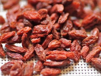 Goji Berry For Treament Of Diabetes & Metabolic Syndrome