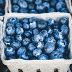 Blueberries Improve Memory & Cognitive Performance