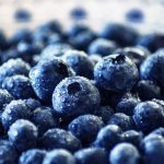 Blueberry Cognitive Performance