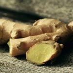 Ginger Medicinal Herb Encyclopedia