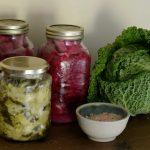 Probiotics, Prebiotics & Fermented Foods Fatty Liver Disease