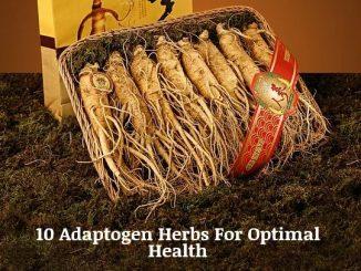 10 Adaptogen Herbs For Optimal Health