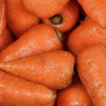 Carrots Decrease Breast Cancer Risk