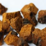Chaga Mushroom Antiviral